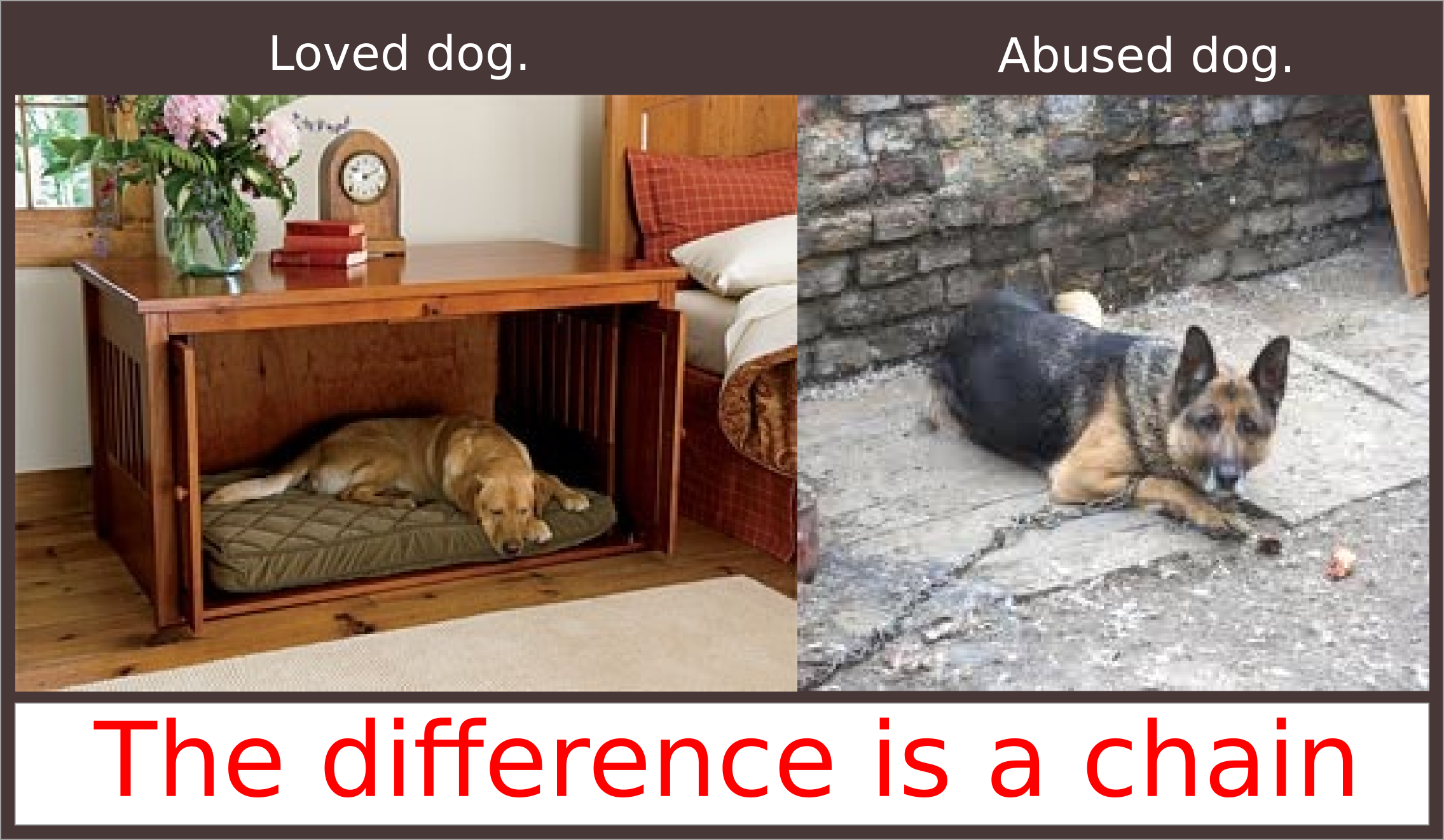 Happy dog versus chained dog